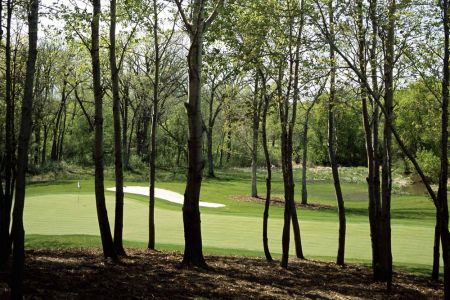 PW-Legends-PW-new-4-thru-trees-CROP-2mb4